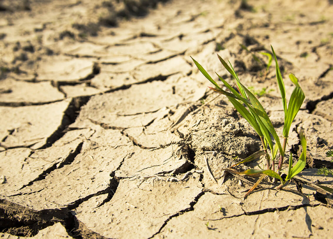 Why We're Still Talking About the Drought of 2016