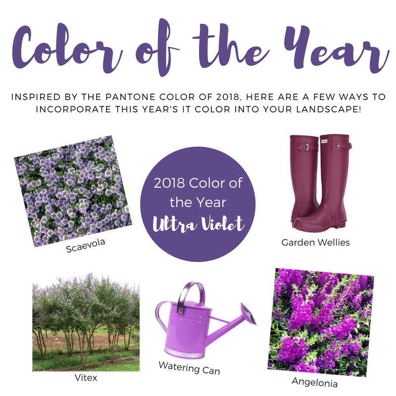 "The ""It"" Color of 2018"