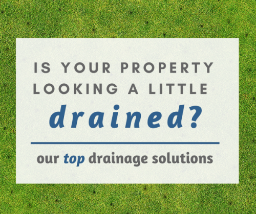 Our Top Drainage Solutions for Commercial Landscapes