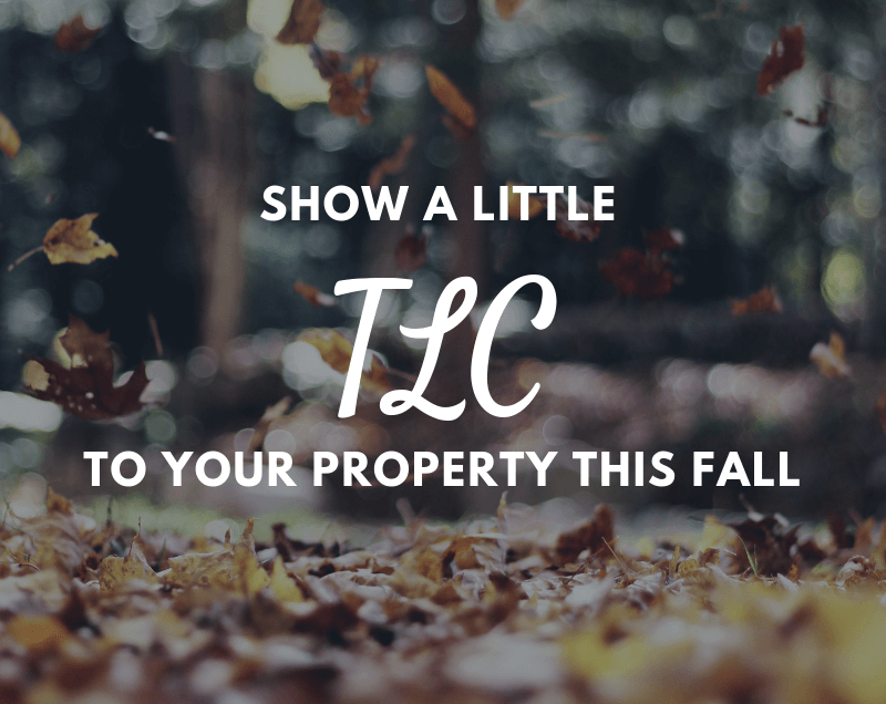The TLC your Property Needs Now