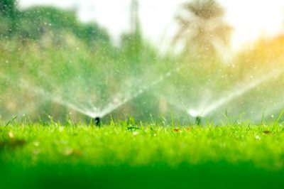 How to Effectively Irrigate Your Property this Summer