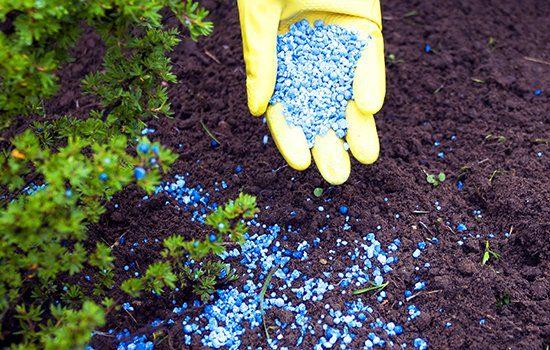Fertilizer 101 Landscape Workshop