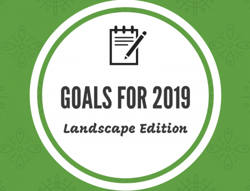 New Year Goals – Landscape Edition