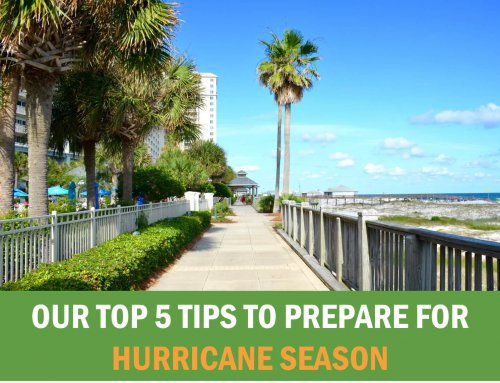 Our Top 5 Tips to Prepare for Hurricane Season