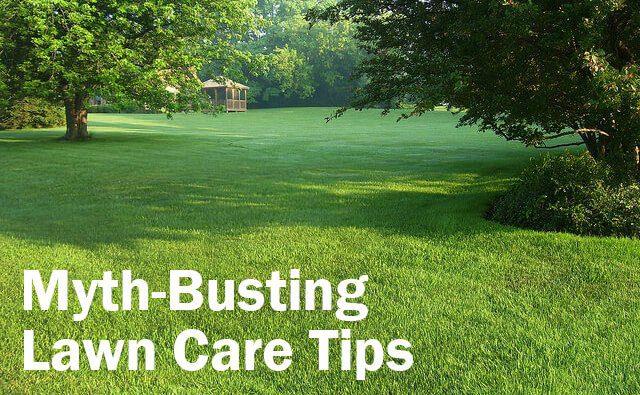 Myth busting lawn care tips landscape workshop for Garden maintenance tips