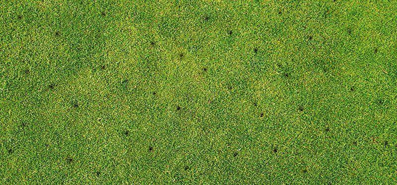 grass_aeration_blog