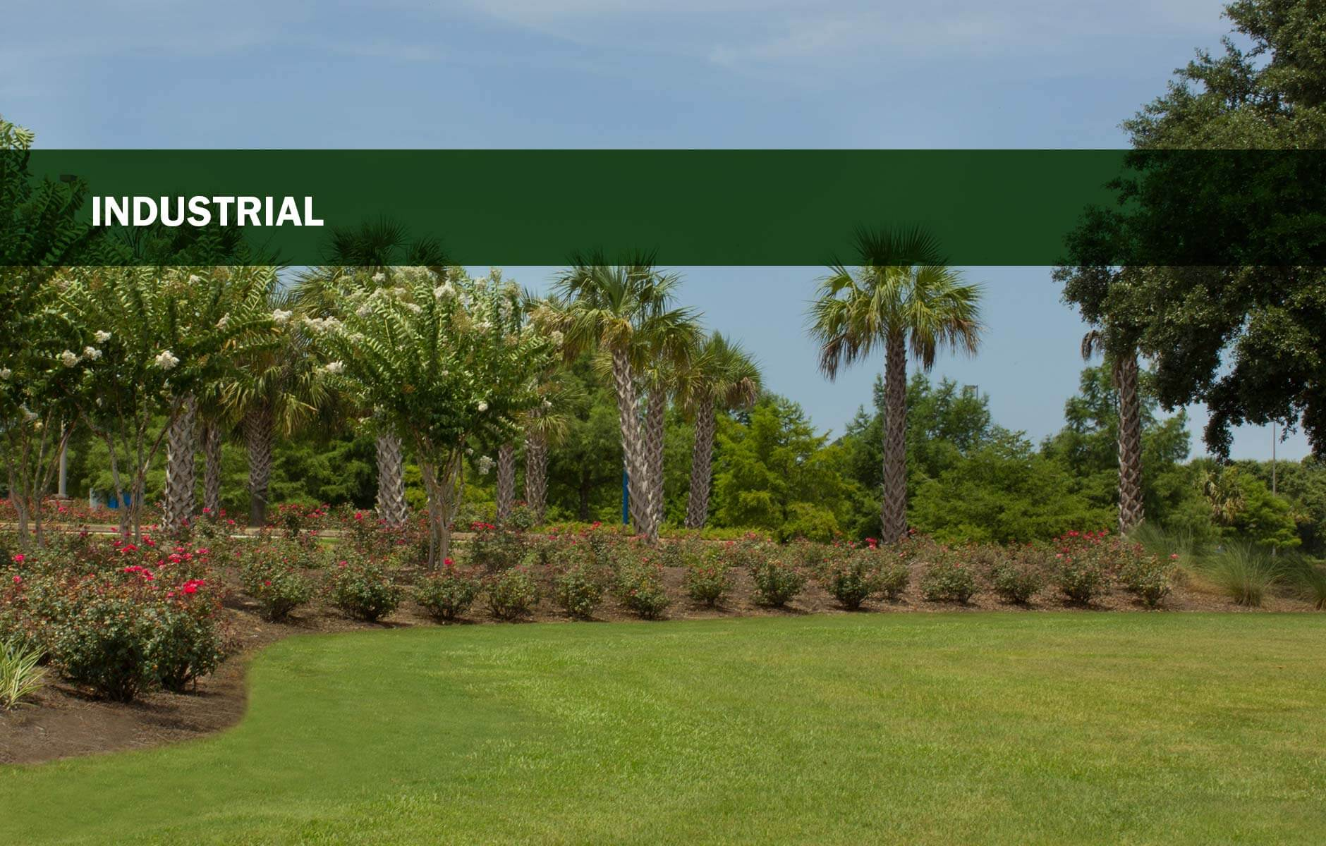 Grass, shrubbery and palm trees on an industrial property in Mobile, Alabama