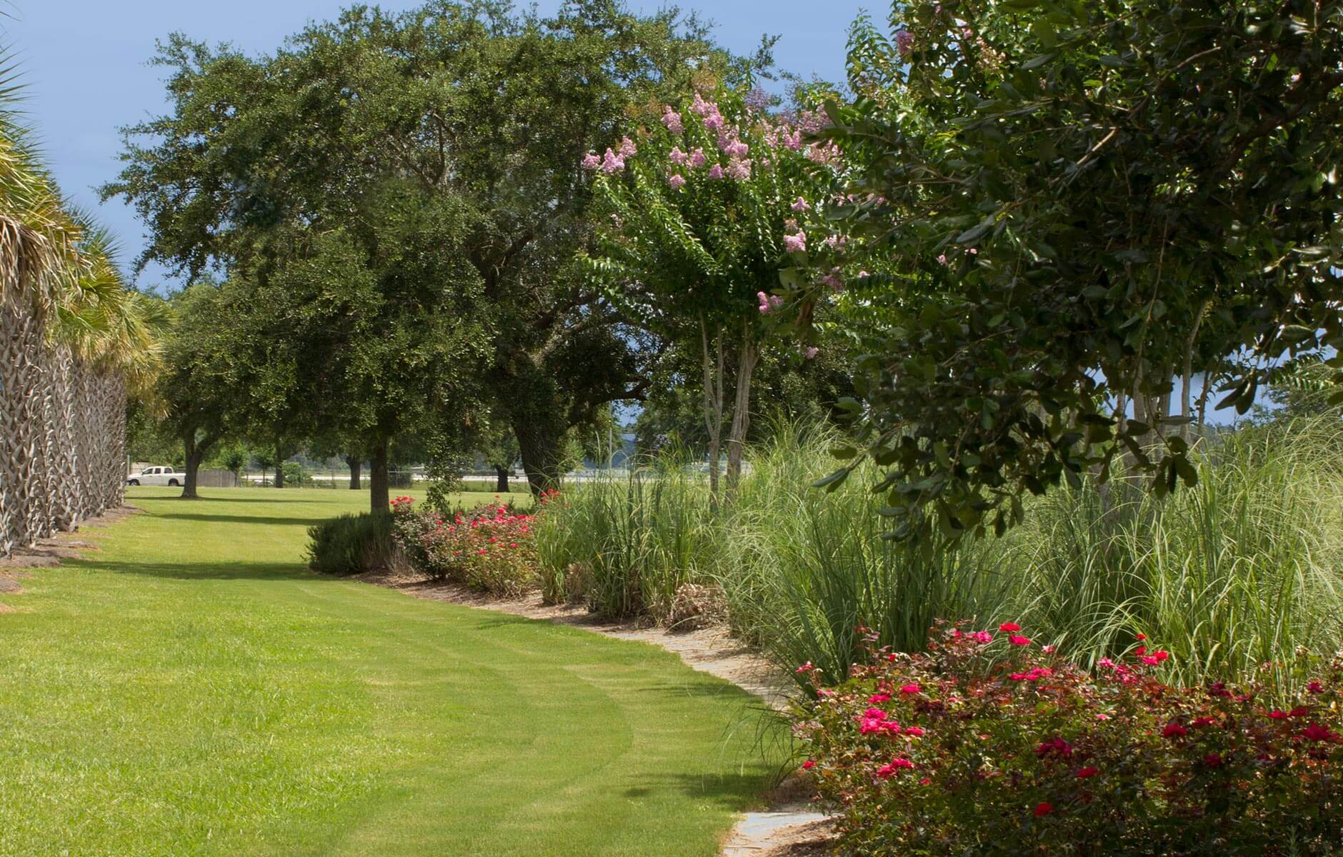 Palm trees, green grass and pampas grass decorate the landscape of this property