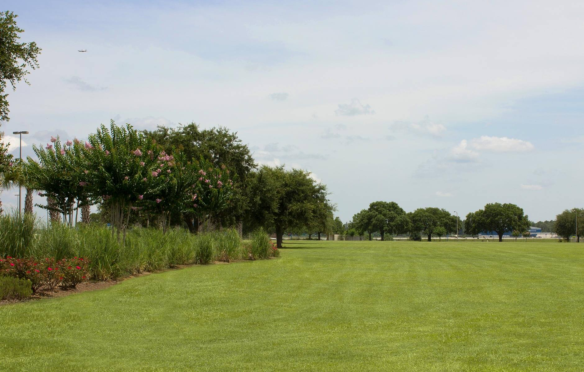 Open field of freshly maintained green grass on the Gulf Coast