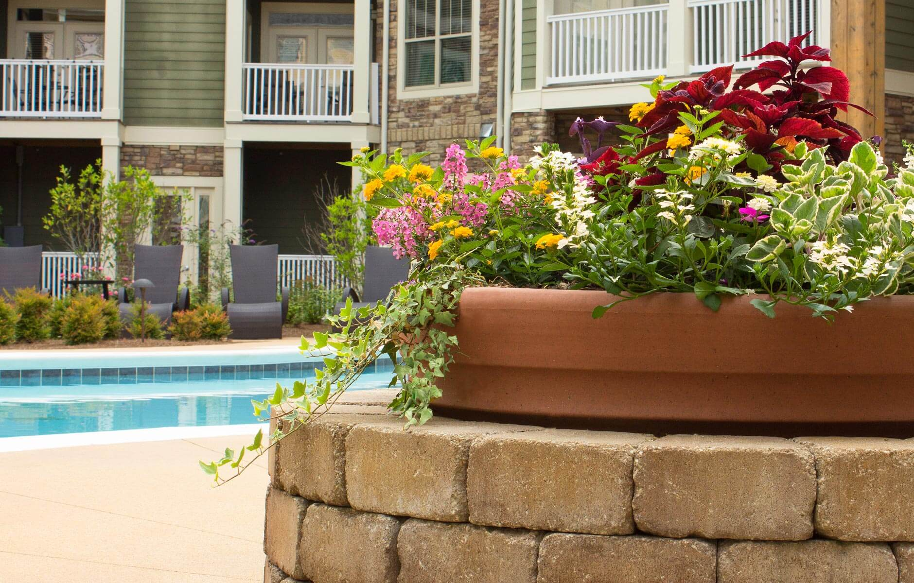 Large flower pots with unique color combinations