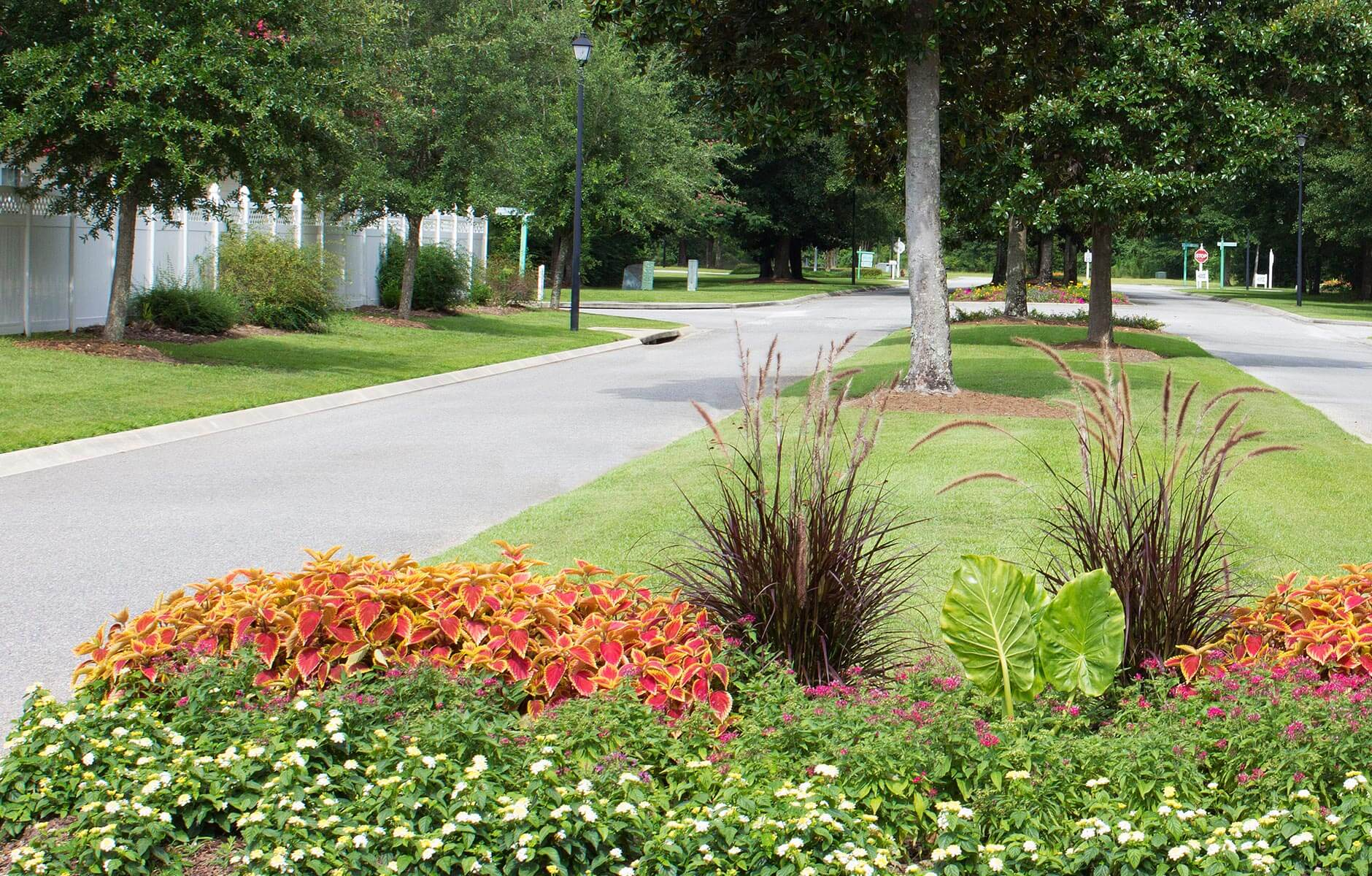 Colorful flower combination and fresh cut grass in this neighborhood island
