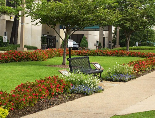 How Landscaping Can Keep You and Your Property Safe