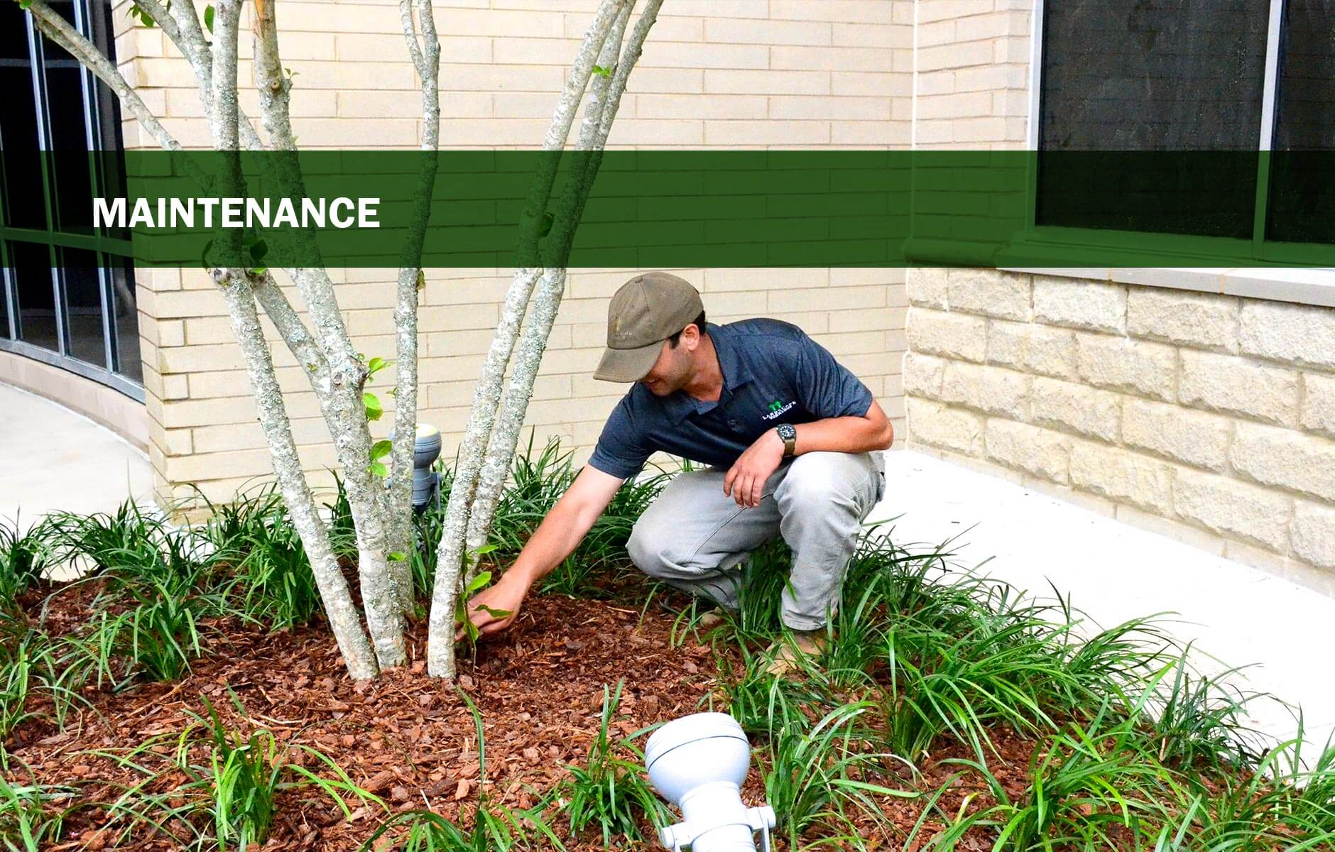get a free estimate from landscape workshop