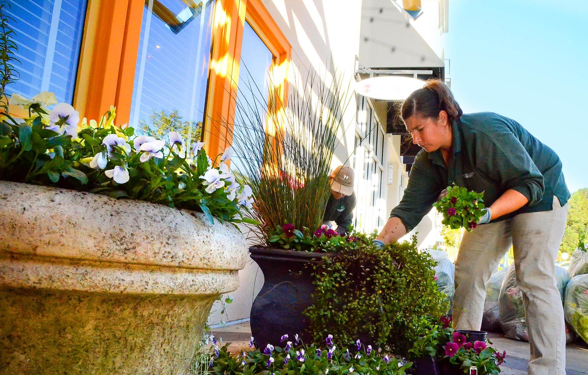 Installing new flowers in flower pots at large retail center