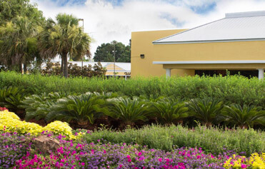 Unique flower and shrub bed at a retail center near Gulf Shores, Alabama