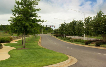 Well maintained office park with fresh cut grass and shrub beds