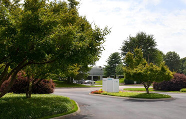 Large flower and tree beds at Knoxville, Tennessee office park